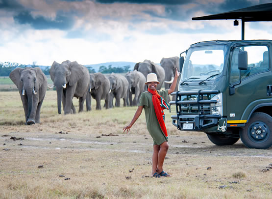 Image of a lady in front of elephants inside the Belle Balance Bush Hideaway home page of the website